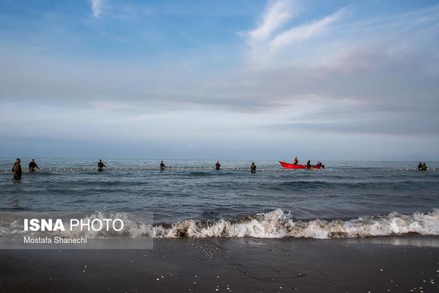 صید ماهی در دریای خزر - شبه جزیره میانکاله