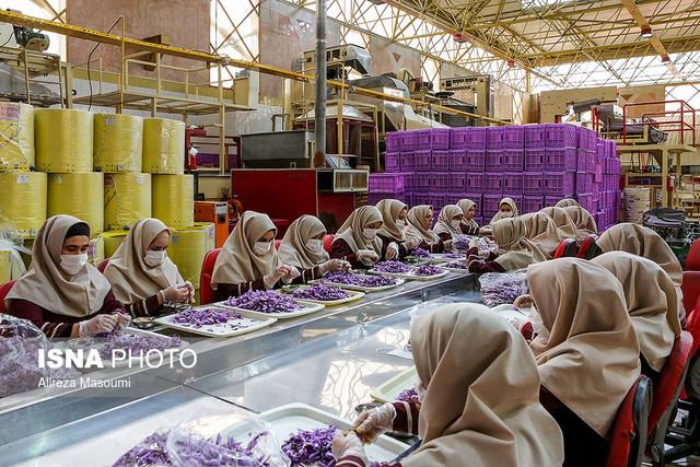 بازدید وزیر کار از طرح توسعه ارزشهای روستایی - مشهد