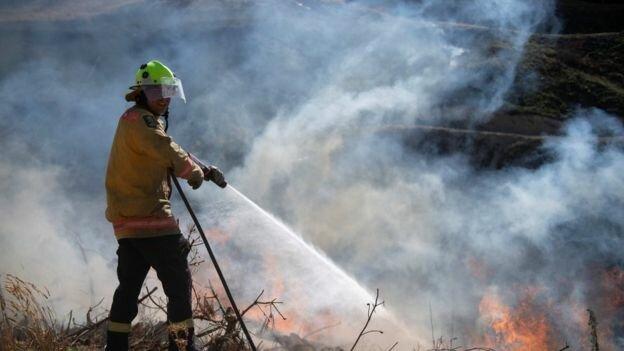 آتش سوزی نیوزیلند