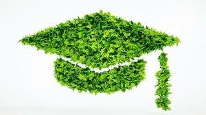 دانشگاه سبز