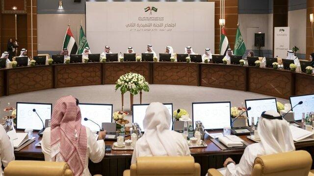 شورای هماهنگی عربستان و امارات