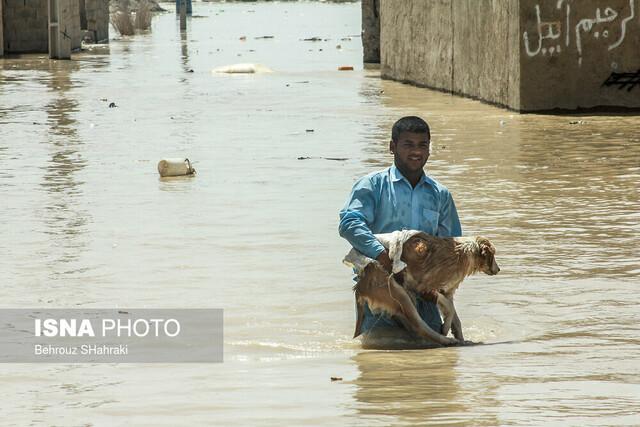 خسارت سیل و امدادرسانی به سیل زدگان  سه روستای داشک، علی رمرودی و آبیل در استان سیستان و بلوچستان