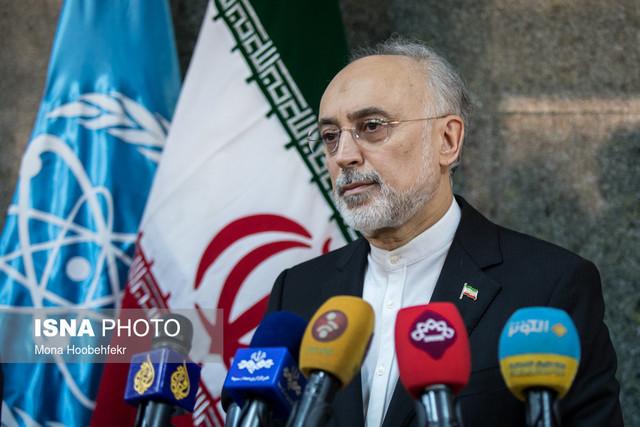 دیدار یوکیا آمانو، رییس آژانس بینالمللی انرژی اتمی با علی اکبر صالحی
