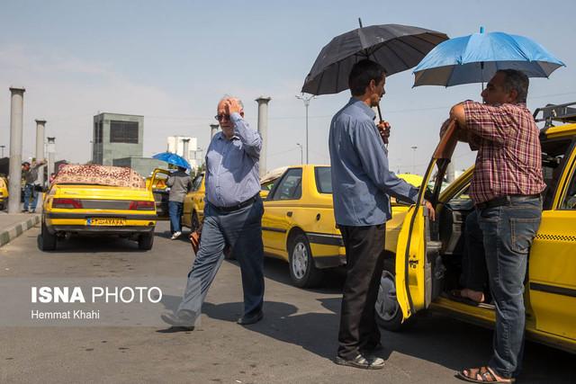 تیغ گرما بر تن تهران