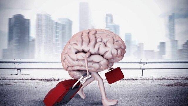 فرار مغزها