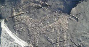 سنگ نگارههای چند هزار ساله