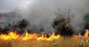 آتشسوزی مراتع قم