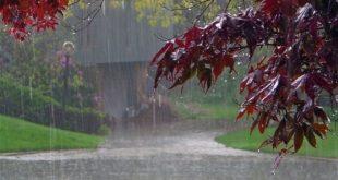 بارش رگباری