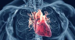 بیماری دریچه قلب