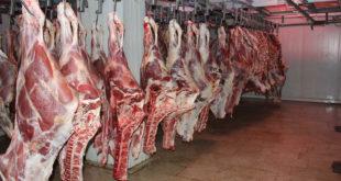 بازار گوشت قرمز