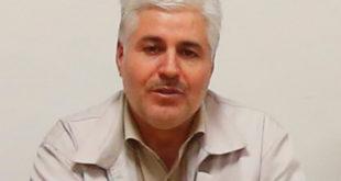 محمدرضائي