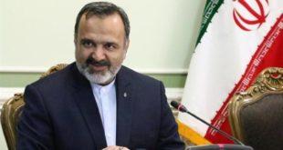 علیرضا رشیدیان رئیس سازمان حج و زیارت