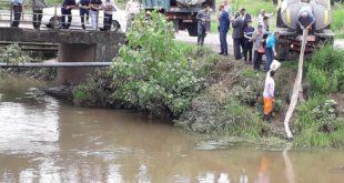 رهاسازی چند میلیون بچه ماهی در رودخانههای صومعه سرا
