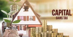 Plan Capital Income Tax