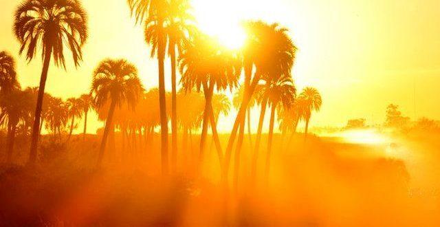 رطوبت ۹۸ درصدی هوای هندیجان