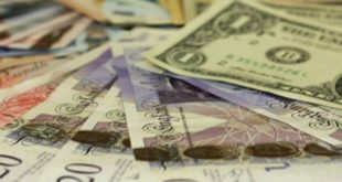 Iranian Foreign Exchange Policies