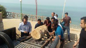 کشف دو قطعهسنگ تاریخی در تپه ساحلی ریشهر در بوشهر