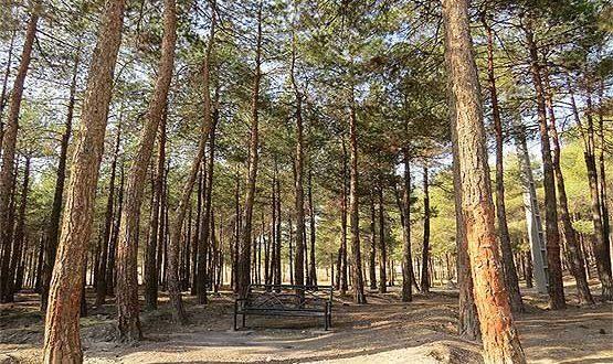 Chittgar Park