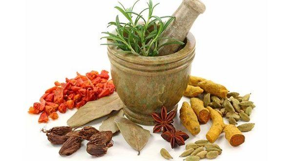 آموزش فروشندگی گیاهان دارویی