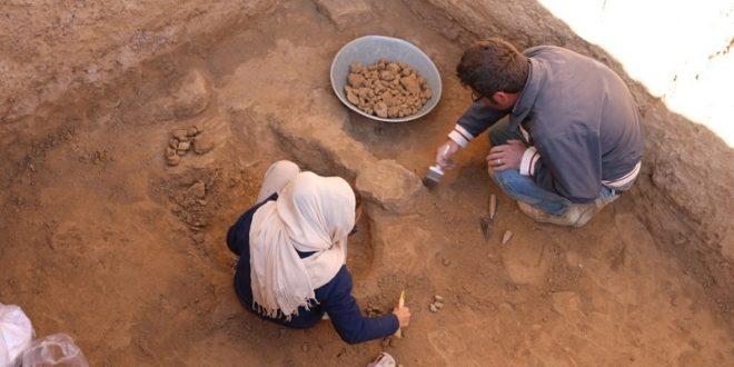 کشف اثر مُهرهای گلی از محوطه تاریخی ریوی