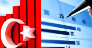 The Turkish economy