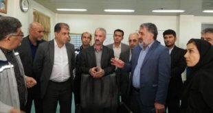 ساختار سازمانی شرکت پایانههای نفتی ایران