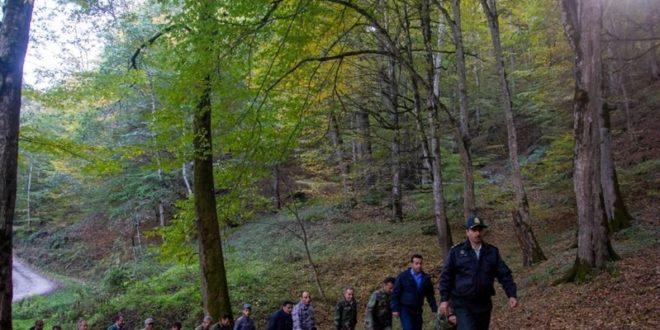 جنگلهای هیرکانی مازندران