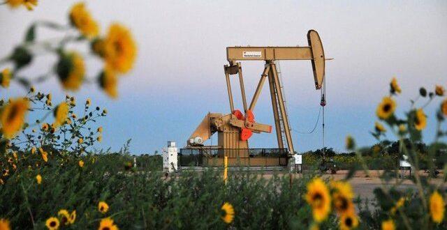 تولید نفت آمریکا