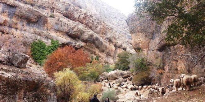 طبیعتگردی در استان فارس