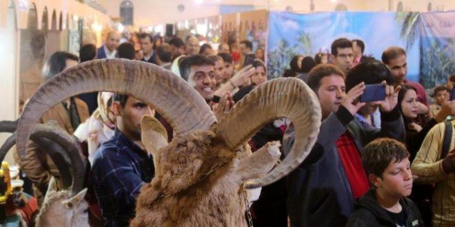 نمایش آثار هنرمندان قزوینی در نمایشگاه صنایعدستی بوشهر