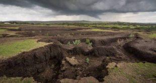 تشکیلات خاک
