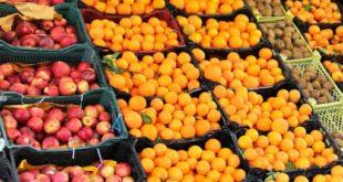 تأمین و ذخیره میوه شب عید