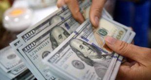 گالری+دلار