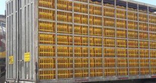 کشف لوازم پزشکی قاچاق در سبدهای مرغ!