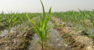 نیازهای کشاورزی